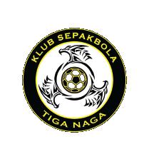 logo-KS TIGA NAGA